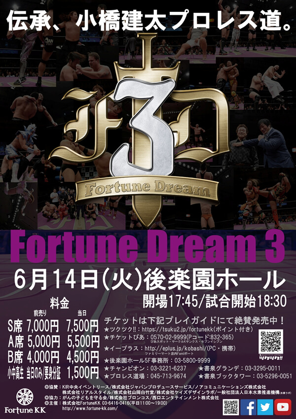 Fortune Dream3